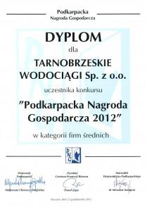 podk nagr gosp 2012 dyplom